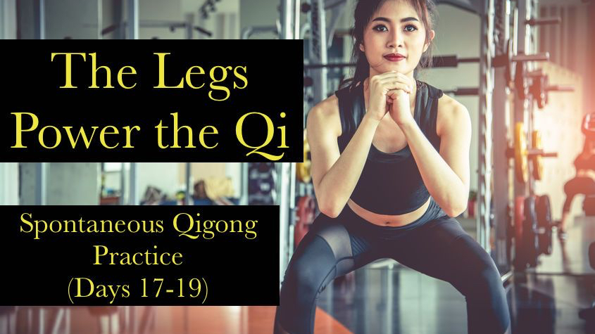 The Legs power the qi