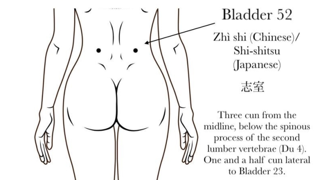 Bladder 52 Acupuncture Point