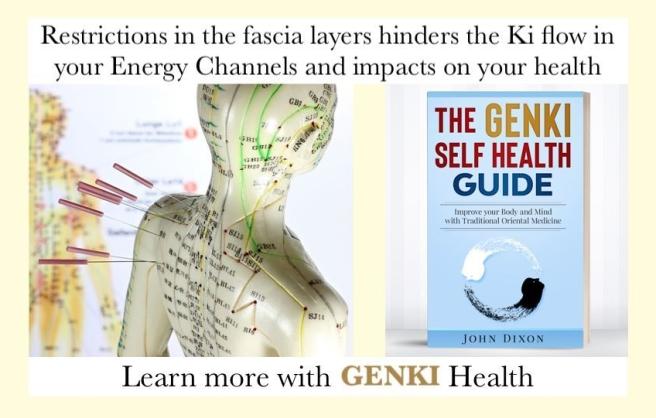 Meridians Acupuncture Genki Health Japanese