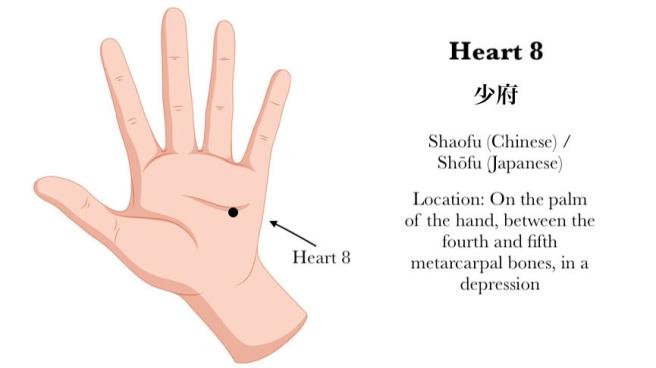 Heart 8 Acupressure Acupuncture Point