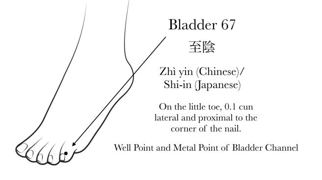 Bladder 67 Acupuncture Point